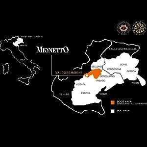 Prosecco region Italy Valdobbiadene Mionetto