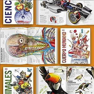 imágenes increíbles; mejores libros; libros infantiles; imágenes; fotografías; aprender en casa;