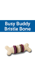 busy buddy dog toy, pet safe, treat ring dog toy, dog toy holds treat, engaging dog toy