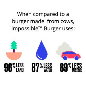 meat substitute, environment, vegetarian, vegan