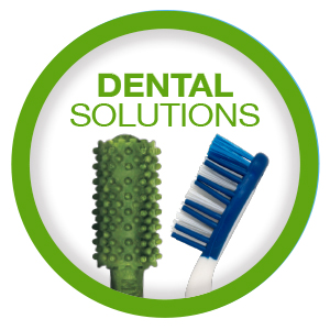 dental solutions for dogs