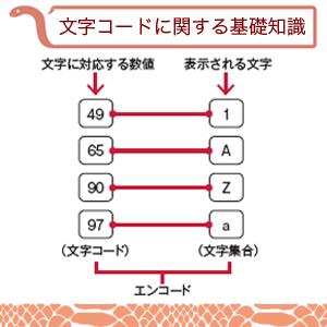 python9.jpg