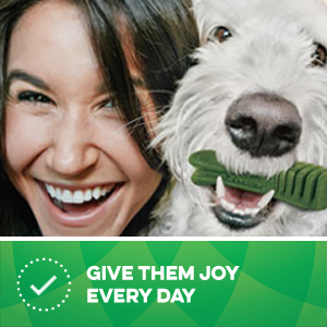 One GREENIES Dog Treat each day can help reduce plaque and tartar buildup and freshen breath.