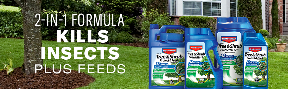 Bioadvanced bayer advanced tree and shrub lawn care
