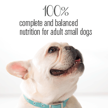 One hundred percent complete and balanced nutrition for small adult dogs