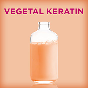L'Oreal Paris Dream Lengths Vegetal Keratin