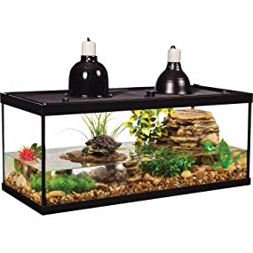 Amazon Com Tetra Aquatic Turtle Deluxe Kit 20 Gallons Aquarium With Filter And Heating Lamps 30 In Nv33230 Pet Supplies