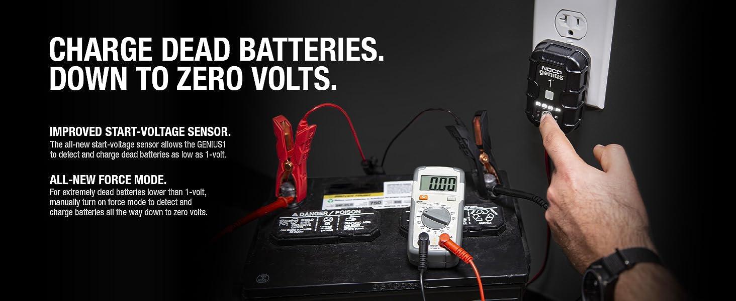 GENIUS1, 6V, 12V, charger, maintainer, battery desulfator, lead-acid batteries, 30 amp-hours