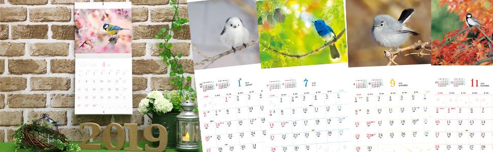 ましかくカレンダー ふわもふことり2019 インプレス カレンダー 2019