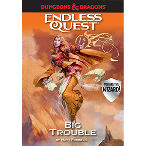 big trouble;wizard;endless quest;d&d;dungeons & dragons;fantasy books for kids;tabletop gaming