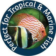 Tropical & Marine