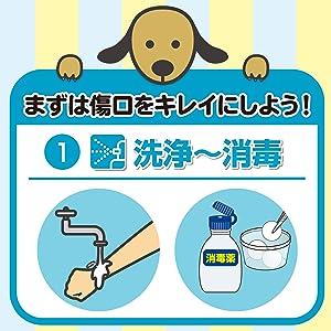 洗浄 消毒