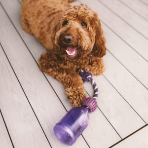 game for dogs, dog toys for poodles, dog toys for golden retriever, puzzle game for dogs