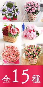 3,480円鉢花