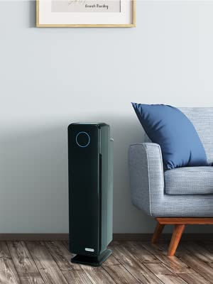 Guardian, air purifier, H13, home, clean, air, filter, filtration, odor, healthy, purifier