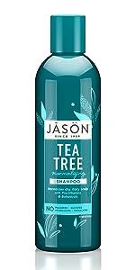 Jason Tea Tree Normalizing Shampoo