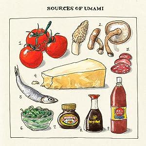 Salt, Fat, Acid, Heat;Samin Nosrat;Wendy MacNaughton;art prints;wall art;gifts for cooks;chef gift