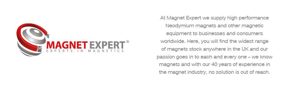 Magnet Expert haute puissance noire Panneau//planification aimant 30 mm de diam/ètre x 11 mm de haut pack de 2
