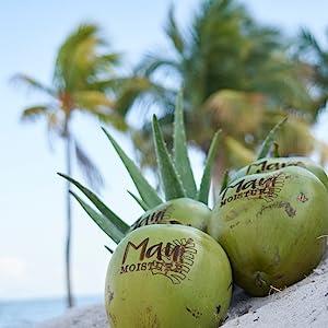 Maui Mositure
