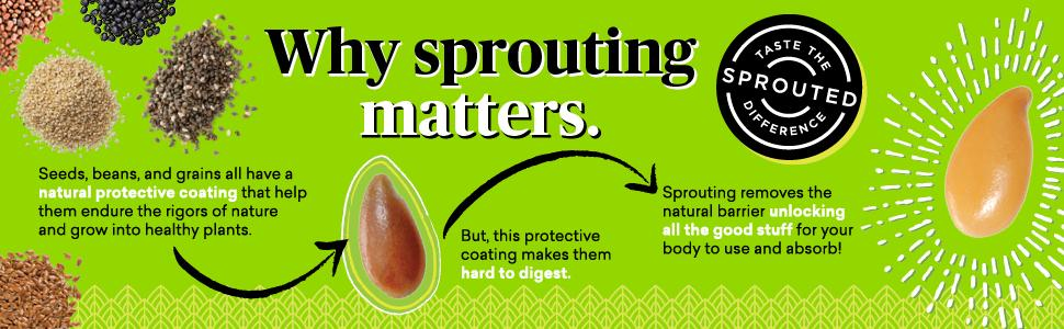 sprouting unlocks nutrients in grains beans seeds for body to use and absorb