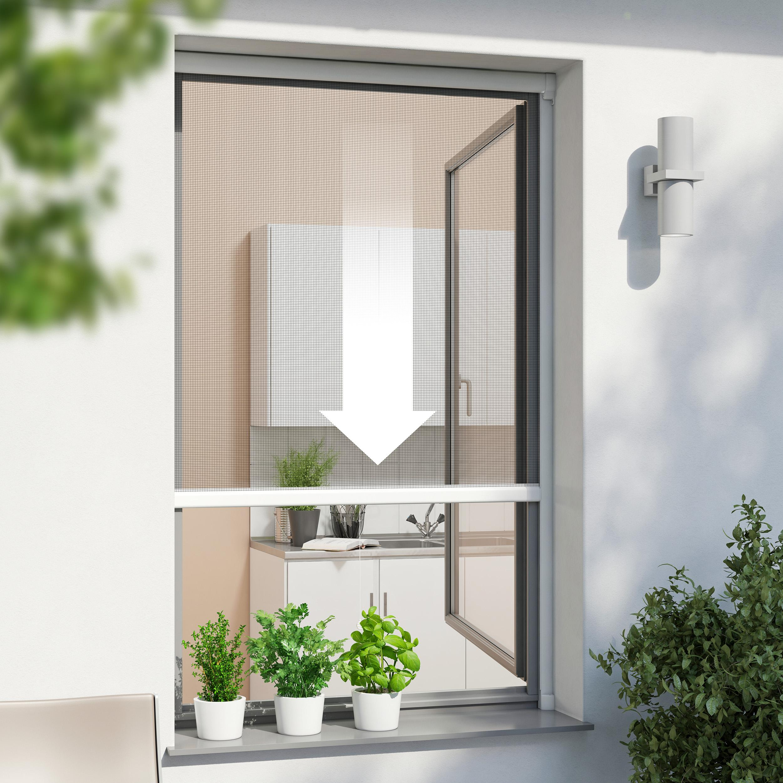windhager insektenschutz rollo fliegengitter alurahmen f r fenster individuell k rzbar 160 x. Black Bedroom Furniture Sets. Home Design Ideas