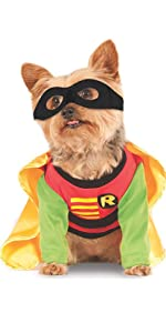 pet robin nightwing cape