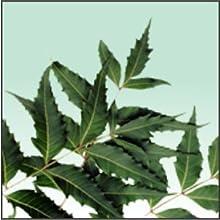Natural Neem Herb