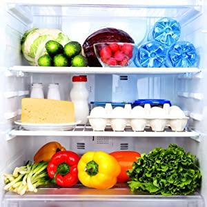 inside of a fully stocked fridge
