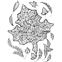 Adult Coloring Gardens