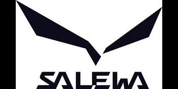 Salewa Herren Ms Wildfire Trekking & Wanderhalbschuhe