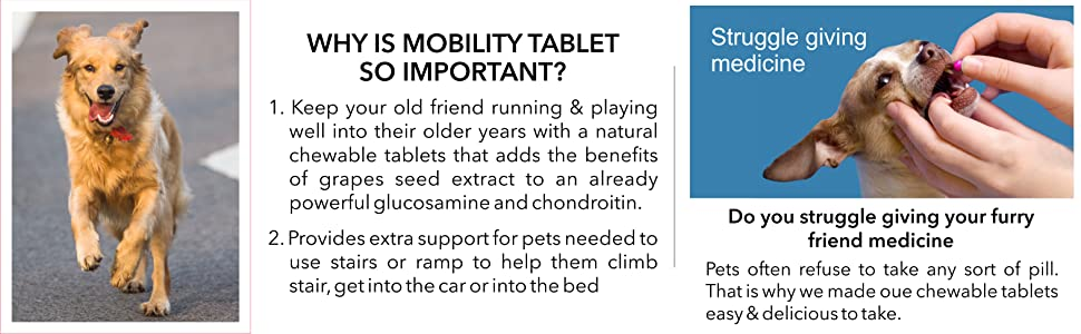 Drools Absolute Mobility Tablet, Supplements for pets,Absolute,Drools,Mobility