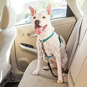 No pull dog harness Freedom front harness no-pull lead easy walk gentle leader seat belt for dogs