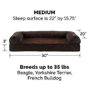 dog; cat; bed; sofa; couch; coffee; medium