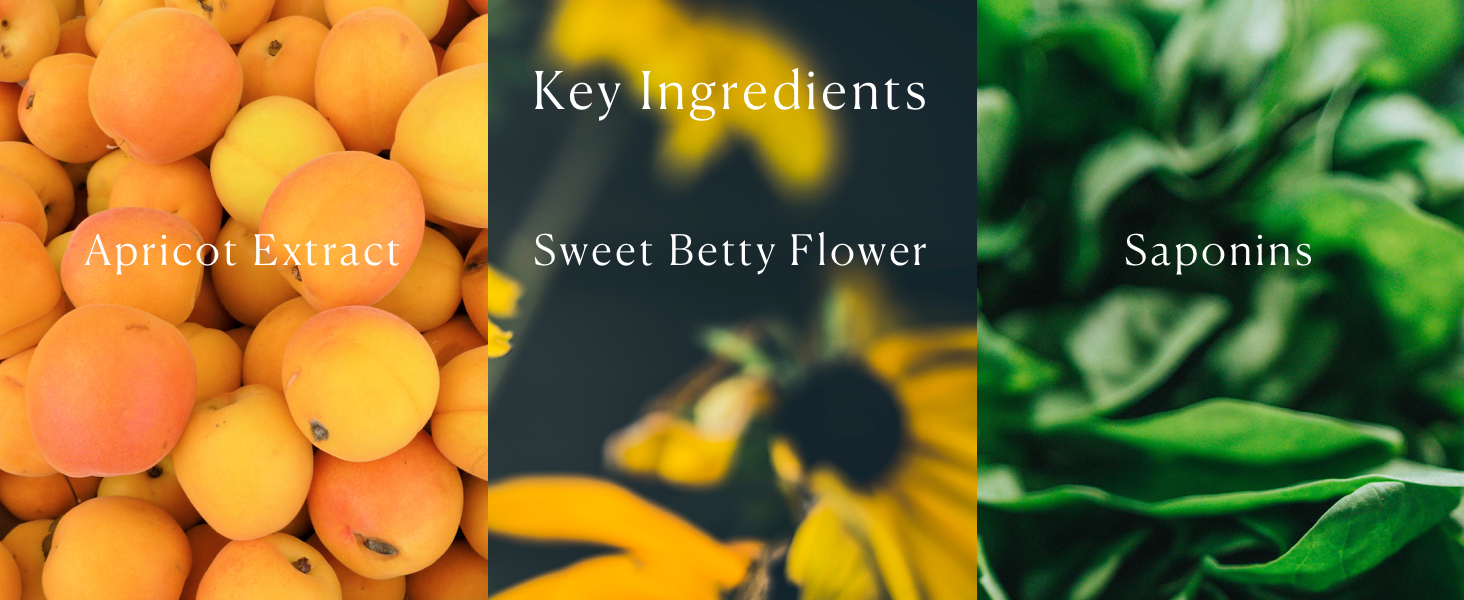 Soothing Apricot Toner Key Ingredients