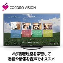 COCORO VISION