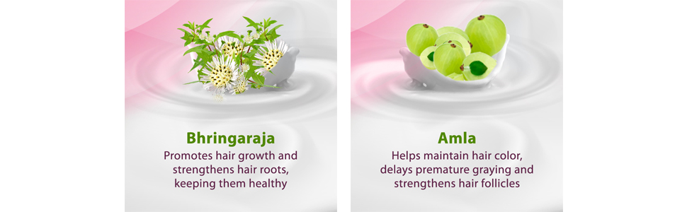 Bhringarajal, Amla, Promotes hair growth; hair root,