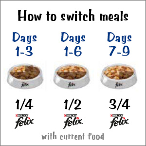 Days of when to switch meals