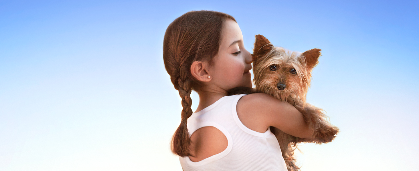 Young girl holding a Yorkie dog over a blue sky