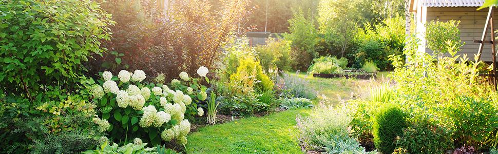 Relaxdays Pérgola metálica de jardín, Soporte para Plantas ...