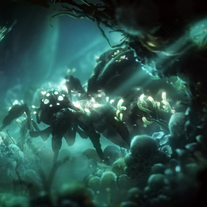 Ori And The Will of The Wisps Collector's Edition