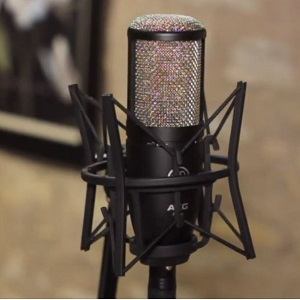 AKG P220 Large-diaphragm Condenser Microphone 6