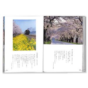 さくら、栃木県