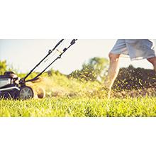 lawn orbi outdoor