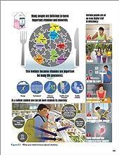 vitamins, minerals, deficiency