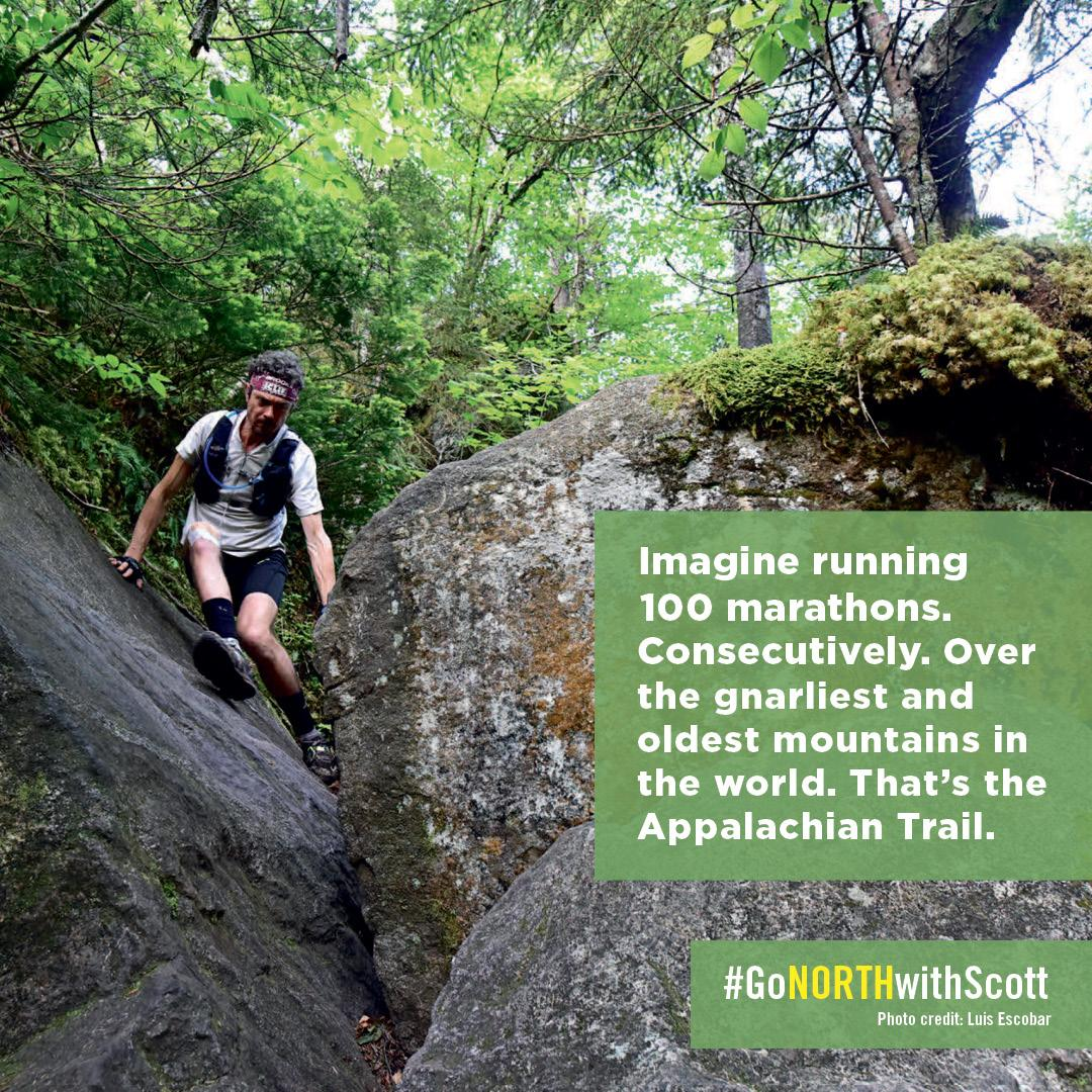 e045cd4613701 Amazon.com  North  Finding My Way While Running the Appalachian ...