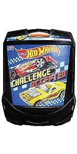 100 Car Case