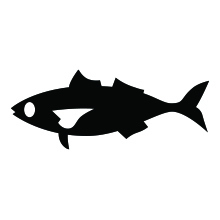 Fishing Timer