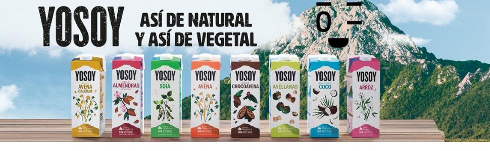Yosoy - Bebida de Avena con Calcio - Caja de 6 x 1L: Amazon.es: Alimentación y bebidas