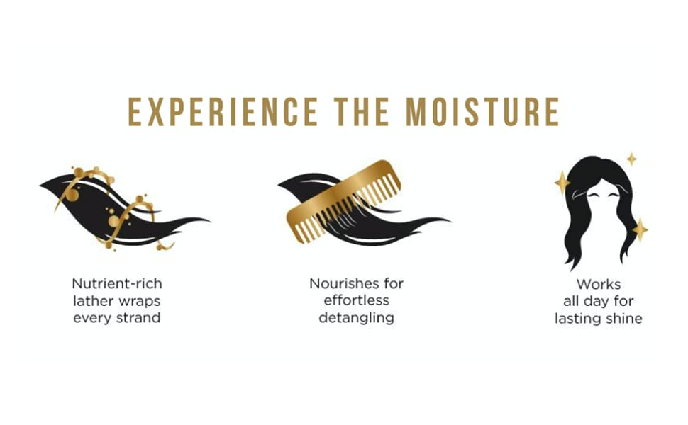 pantene experience the moisture shampoo and conditioner bundle pack dry hair