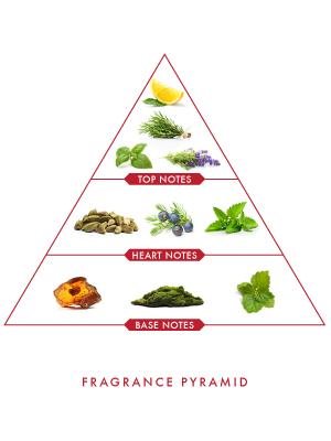 Wild Stone Ultra Sensual Spray Perfume